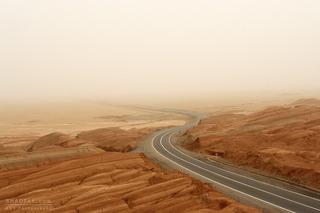 Nowhereland Road, Reza Shadpay