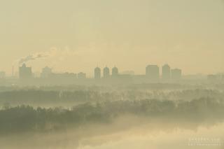Kiev 5am, Reza Shadpay
