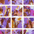 20110523165649-charming_violet