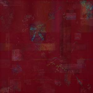 20110524100427-soma