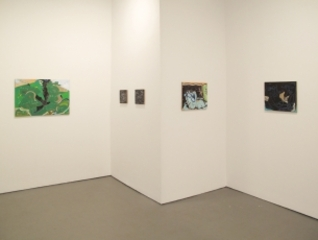 Installation View, Daniel Rios Rodriguez