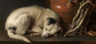 Sleeping Dog (detail), Gerrit Dou