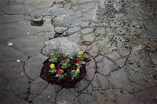 Flower-Pot-Hole #2, Michael Cataldi