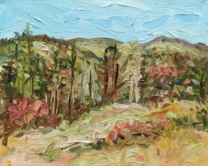 20110602233905-pine_grove_16x20_2011