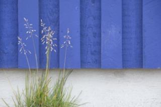 Blue Wood - 1st Place Surfaces, Barry Seidman