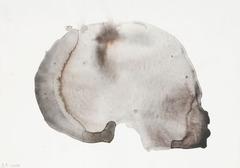 20110607083729-skull-series