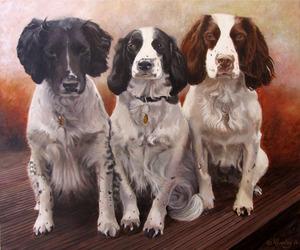20110607124641-three_springers