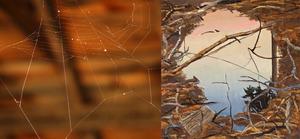 20110611140857-liliweb_abe_mud2_image
