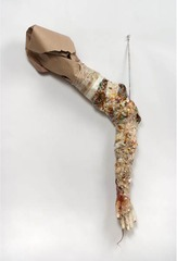 Untitled Arm (Tricotillomania) ,Rachel Niffenegger