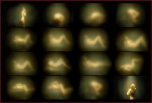 20110912032705-shape_shifting_211x14_11