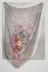 Shroud (Anemone Eye), Rachel Niffenegger