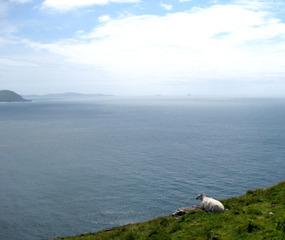 Cill Rialaig, Ballinskelligs, Co Kerry, Ireland,Catherine Howe