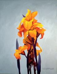 Orange Canas, Loren Clapp