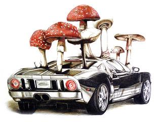 Recycled Mustang.  , Armando Marino