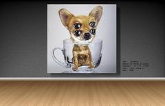 20110927215623-chihuahua