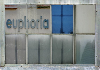Windows of Engagement: Euphoria, Ely Tahan