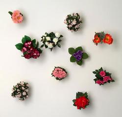Flower pots   , Hans-Peter Feldmann