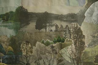 Field Study, Anne Percoco