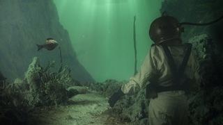 Diver, Troy Morgan