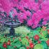 20110712100508-0296_bulbuls_and_the_cupid_fountain