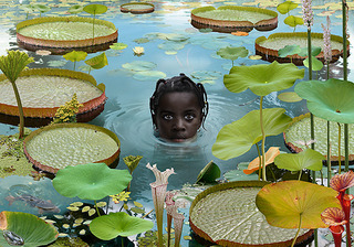 World #7 , Ruud Van Empel