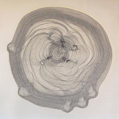 Spiral 69, Davis Birks