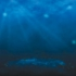 Deepbluewater72