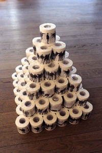 20110728030213-consequences_toilet_paper_pyramid