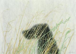 Dog, Edward Ruscha