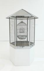 Cage, Adam Parker Smith