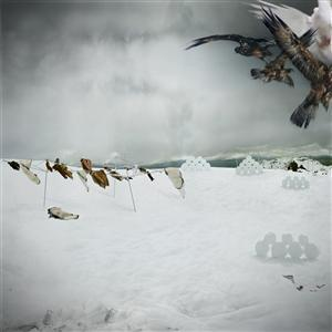 20110815190035-a9edd8a7-77bb-4a68-a701-f30d2b5dd7a4_anthony-goicolea-snowscape-with-owls-2003