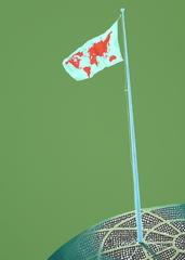 Flaga na maszcie, Wiktor Dyndo