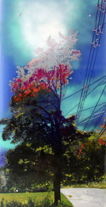 20110824062300-powerline_tree_6_oil_and_spraypaint_on_acrylic_sheet_48x24_inches_2011