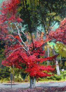 20110824062704-powerline_tree_5_enamel_on_acrylic_sheet_48x36_inches_lr