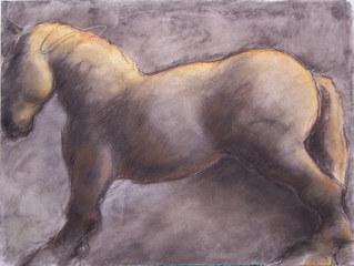 Horse Profile, Kate Hoffman