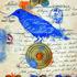 20110826170238-lovebirds-3
