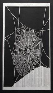 20110830114341-pastine_web_web