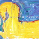 20120123172850-yellow_horse_80_x_100_cm_oil_on_canvas_2011sivas