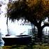 20110907113807-lake_chapala-300-cp