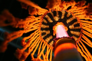 20110907185556-2011-image_1_alextrimino_fiu_website