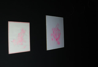 Sex Room, Left Wall: From L, Pink Sex, Pink Spread Sex , Jade Fusco