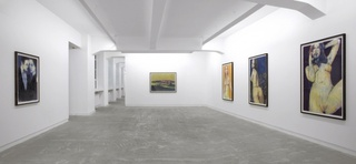 Installation View: Tender, Enoc Perez