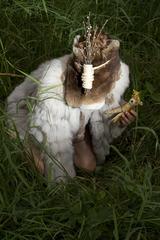 Deer. Hiding., Miriam Wuttke (Germany)