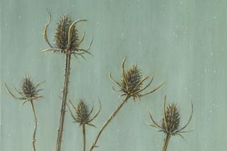 Teasels ( detail), Bella Bigsby