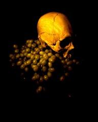 20110922083315-skull___grapes_vanitas