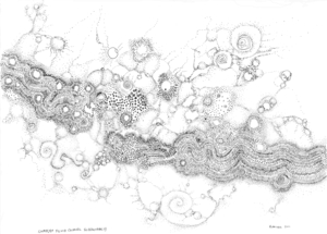 20110923111640-complex_fluid_a_novel_surfactancy