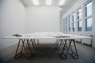 Winter Garden; installation view, Francesc Ruiz