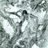 20110129043425-3_sarahhorvat_tree_of_knowledge_graphite_14x11