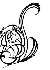20111111094345-swan