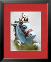 Crazy Horse, Stefany Sherman